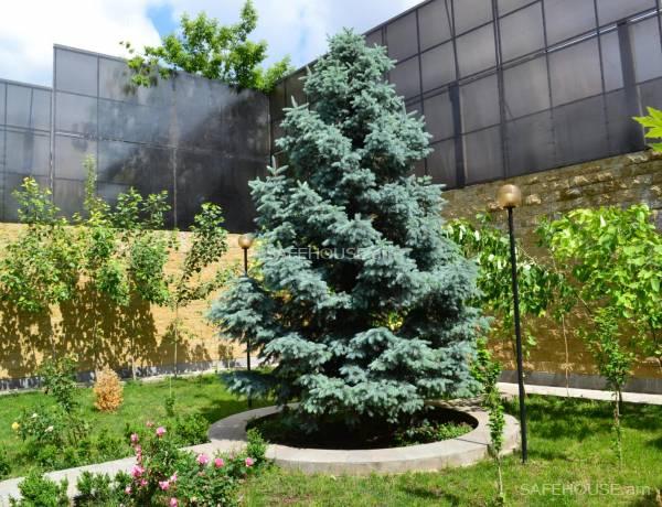 7-senyakanoc-arandznatun-vardzakalutyun-Yerevan-Arabkir