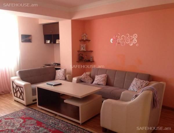 2-senyakanoc-bnakaran-vardzakalutyun-Yerevan-Avan